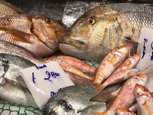 freshfish annasfoodstories